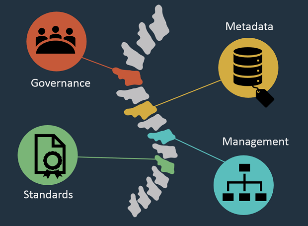 "a cartoon of a spine with the words ""Governance"", ""Metadata"", ""Standards"" and ""Management"" linked to it by coloured lines"